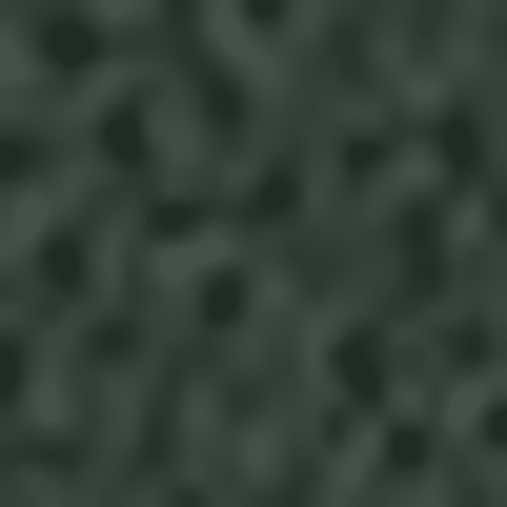DARKEST SPRUCE-YDX