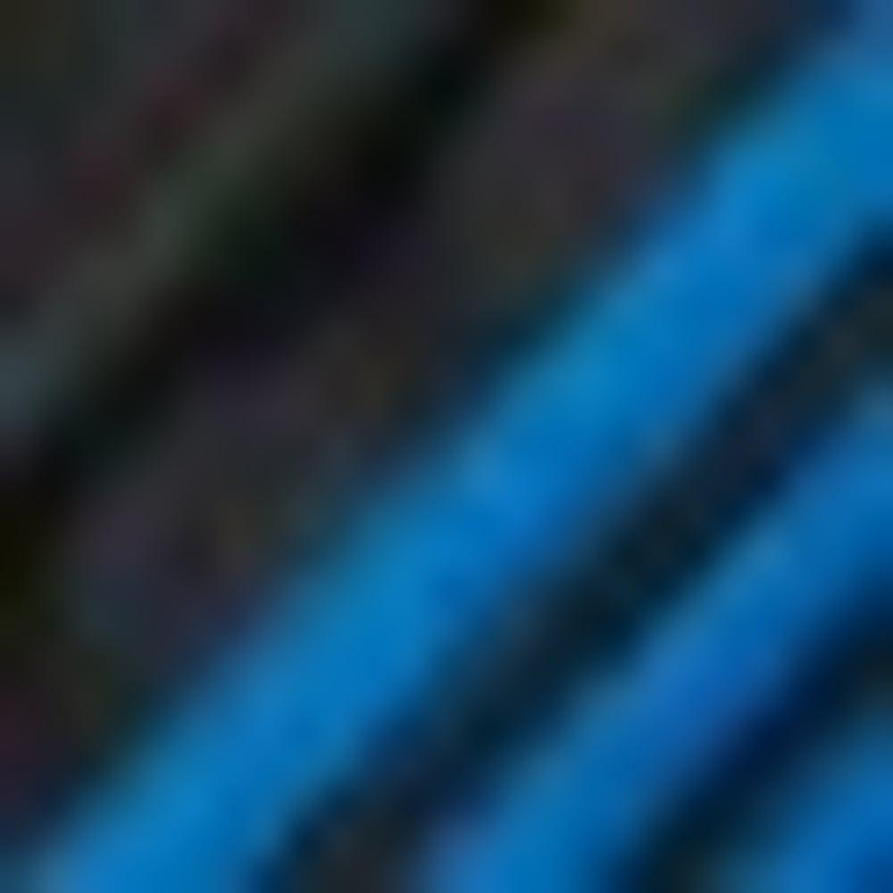BLACK/BLUE-BQ9135