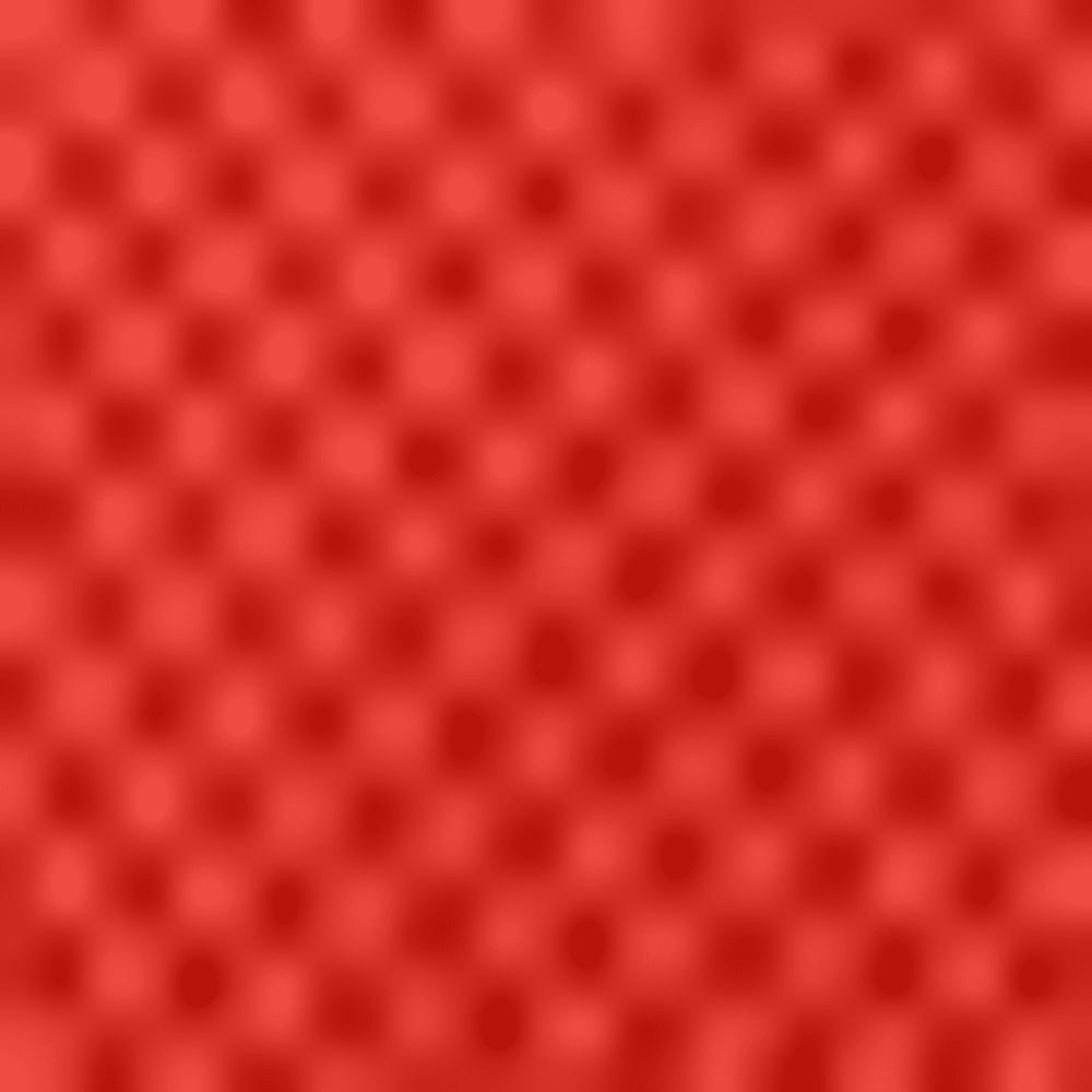 890-RADIO RED