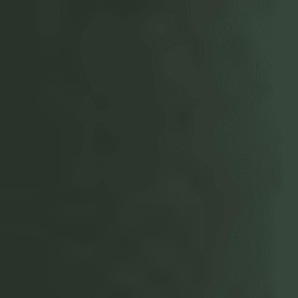 0158-RICH SCARAB