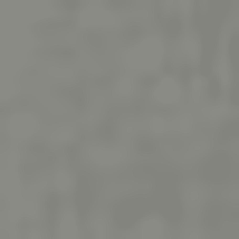 CASTOR GRAY-02