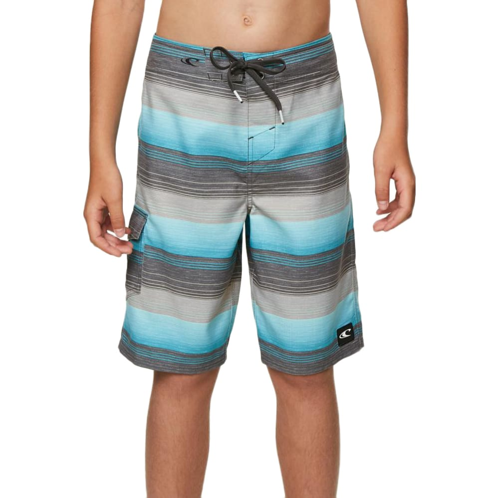 O'neill Big Boys' Santa Cruz Stripe Boardshorts - Blue, 25