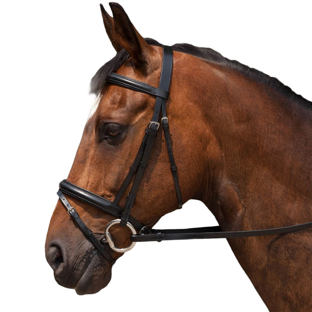 REQUISITE Padded Flash Horse Bridle and Reins - BLACK