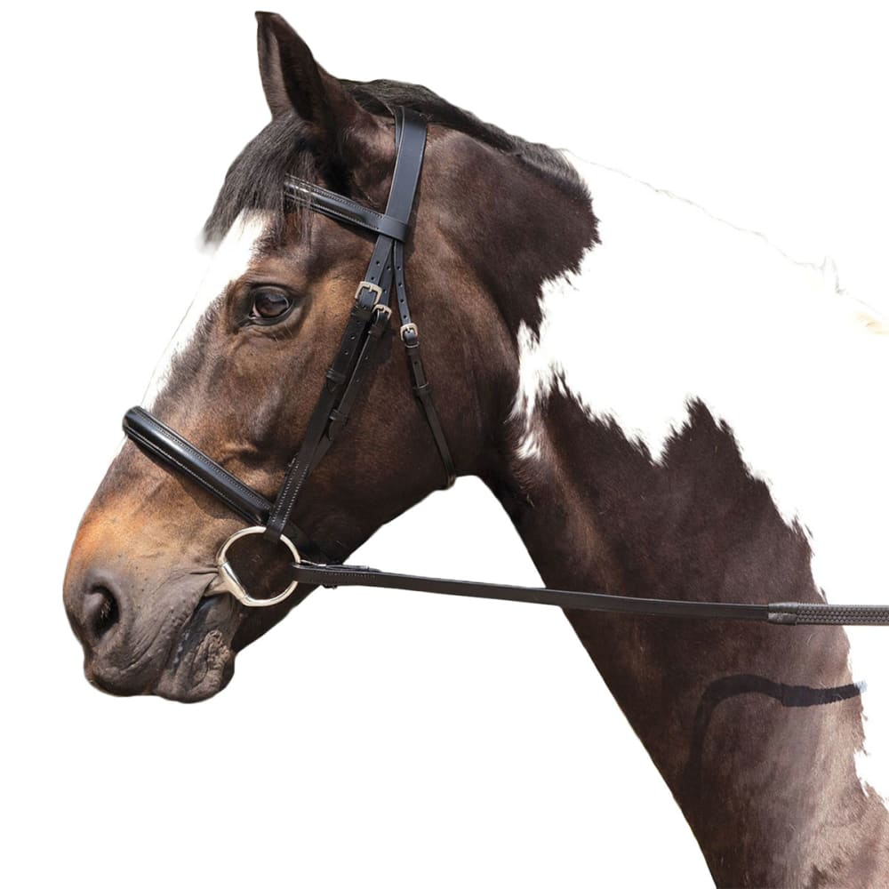 REQUISITE Raised Horse Bridle and Reins - BLACK
