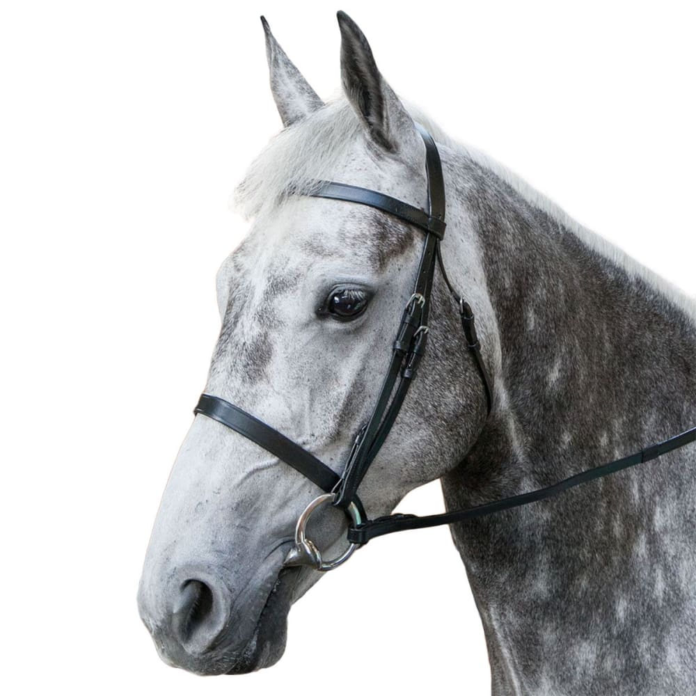 REQUISITE Snaffle Horse Bridle and Reins - BLACK