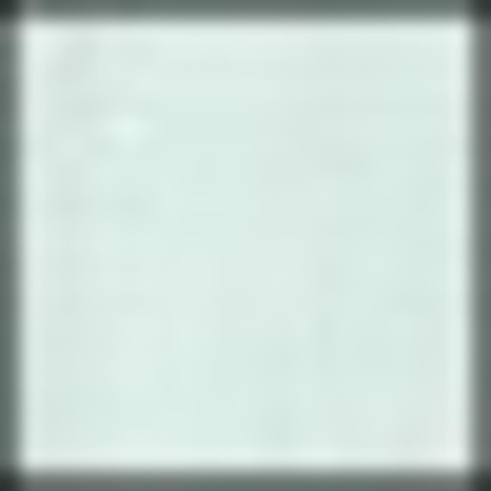 006-FLORIDA BLUE MUL