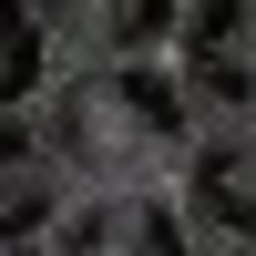 BLK SEQUIN LACE-144