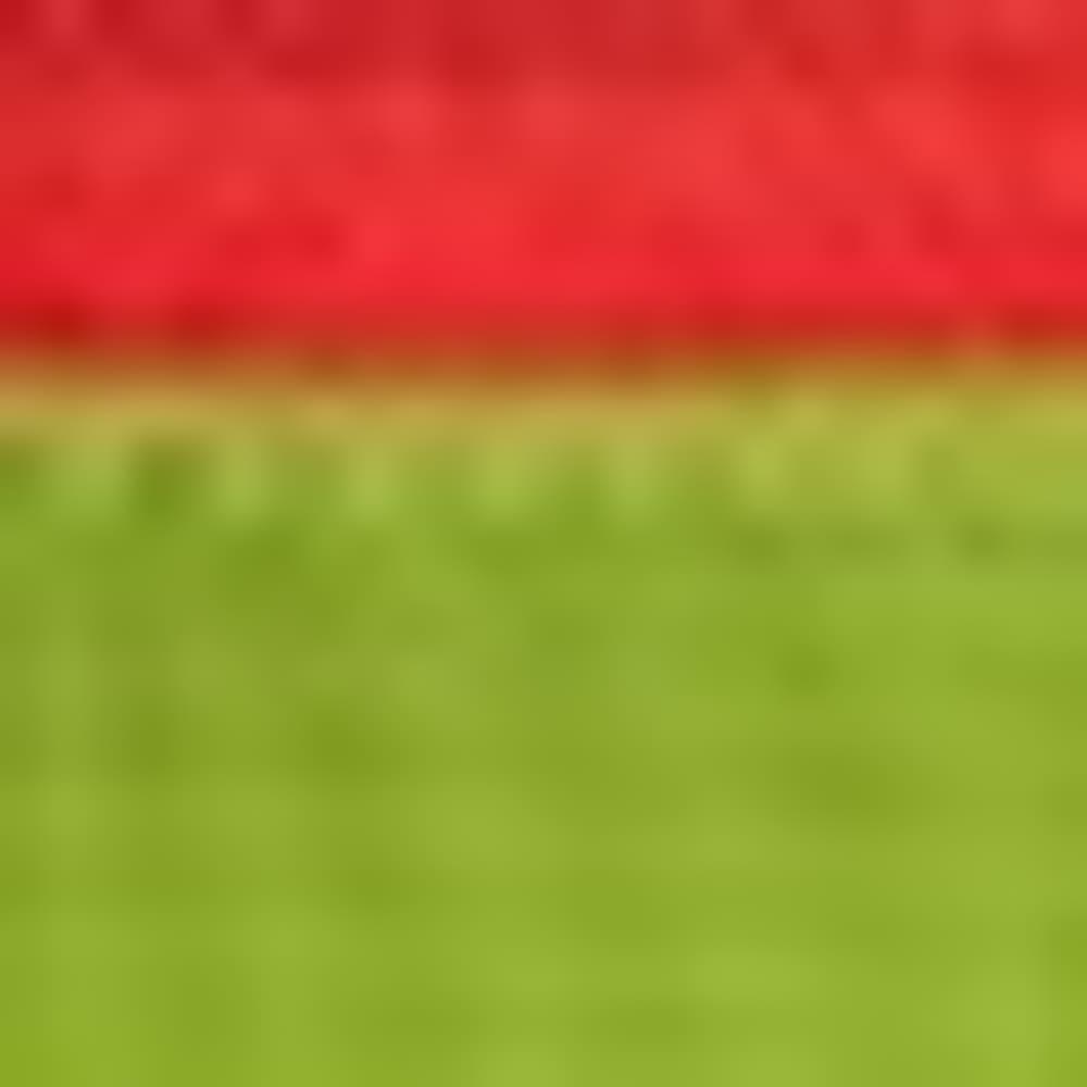 MACAW GREEN
