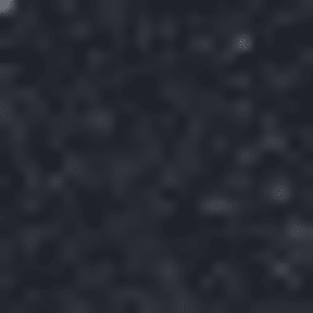 010-BLACK/WOLF GREY
