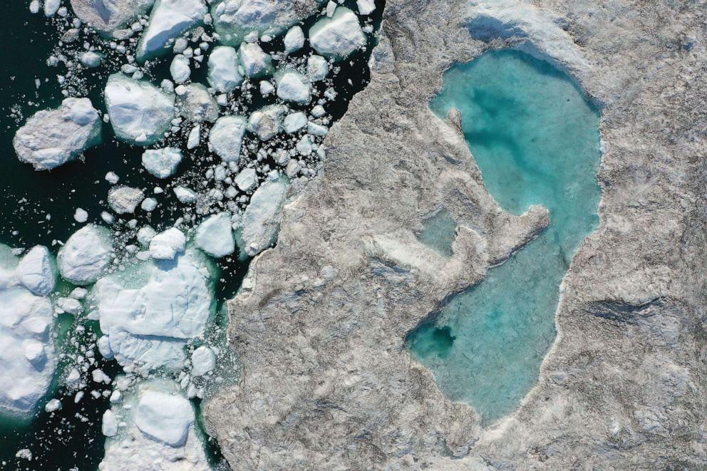 A Föld klíma-vészhelyzettel néz szembe | BOCS Alapítvány
