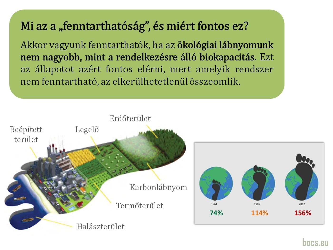Mi az az ökológiai lábnyom?