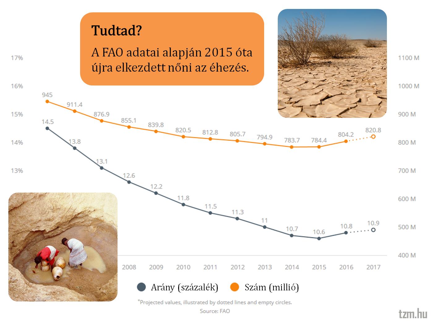 FAO: 2015 óta újra nő az éhezés