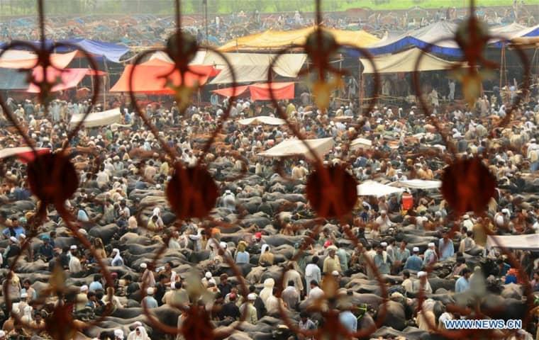 Ázsiában és Afrikában eredő világjárványok | BOCS Civilizációtervezés Alapítvány