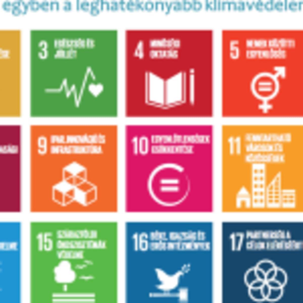 Karbonsemleges Magyarország azonnal: tudomány és humánum