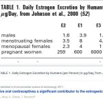A terhesség tízszer nagyobb hormonterhelés, mint a fogamzásgátló | BOCS.EU