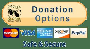 Donation Options - Safe & Secure | BOCS Foundation