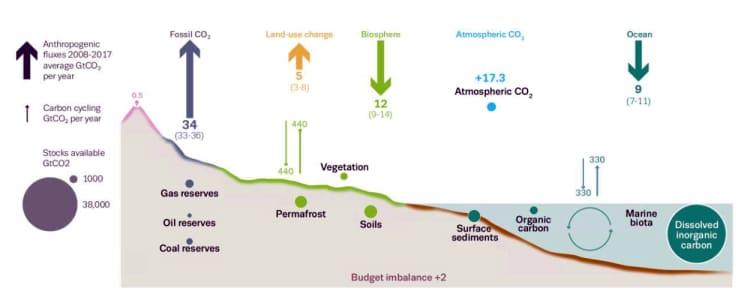 A légzés tovább növeli a fogamzásgátlás klímavédelmi jelentőségét