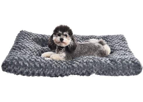 AmazonBasics Plush Dog Pet Bed