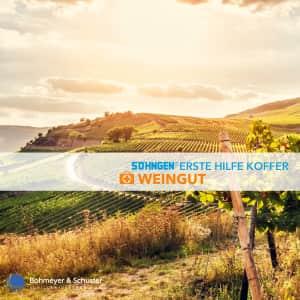 Erste Hilfe Koffer Weingut DIN 13157 / ASR A4.3 - Söhngen® DIREKT