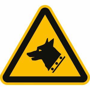 Warnung vor Wachhund nach ISO 7010 (W 013)