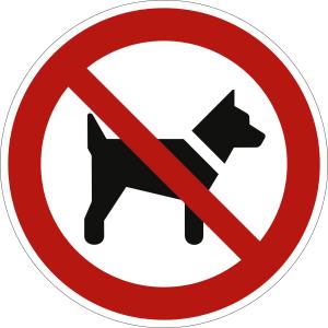 Mitführen von Hunden verboten nach ISO 7010 (P 021)