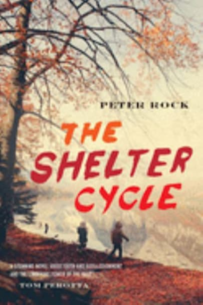 Book cover for The Shelter Cycle by Peter Rock