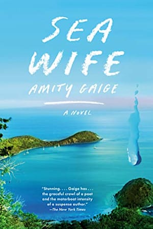 Book cover for Sea Wife by Amity Gaige