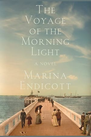 Book cover for The Voyage of the Morning Light by Marina Endicott