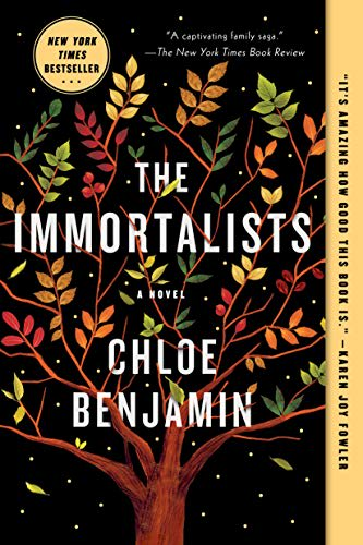 The 30 most anticipated book club books coming in 2018 the immortalists if you fandeluxe Images