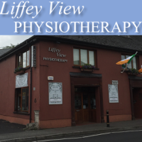 liffey-view-physiotherapy-logo