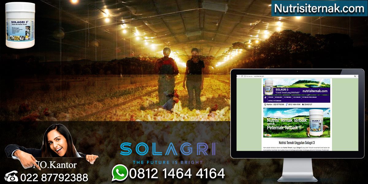Sistem Pemeliharaan Ayam Broiler