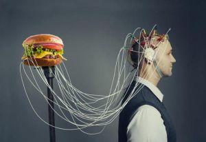 el-cerebro-y-la-comida