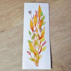 Box de plantes éco-responsable, made in France