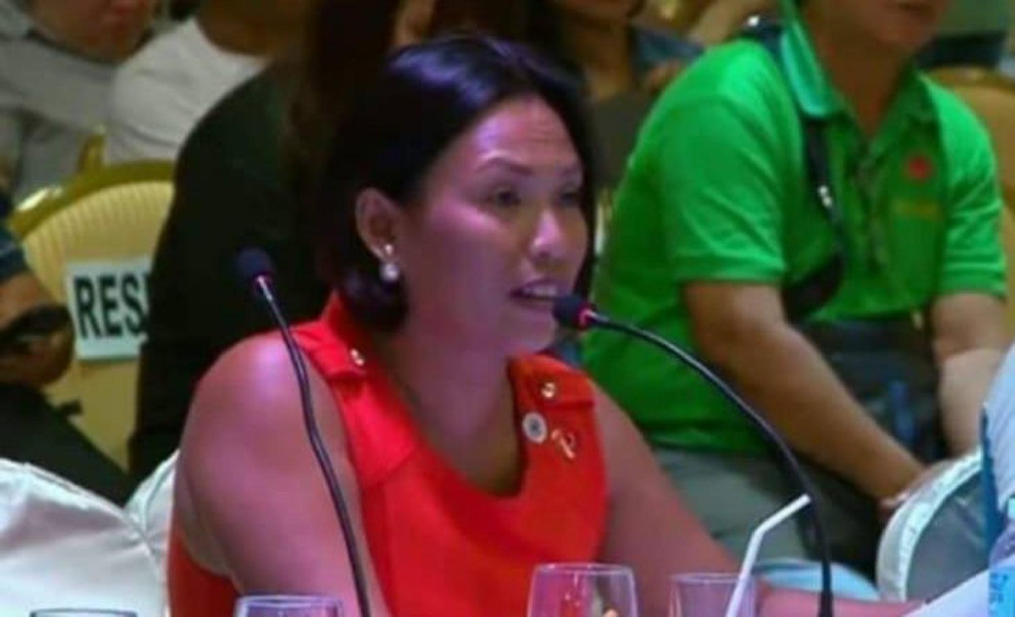 PCCI-Boracay supports BIDA, too, but wants an apolitical administrator