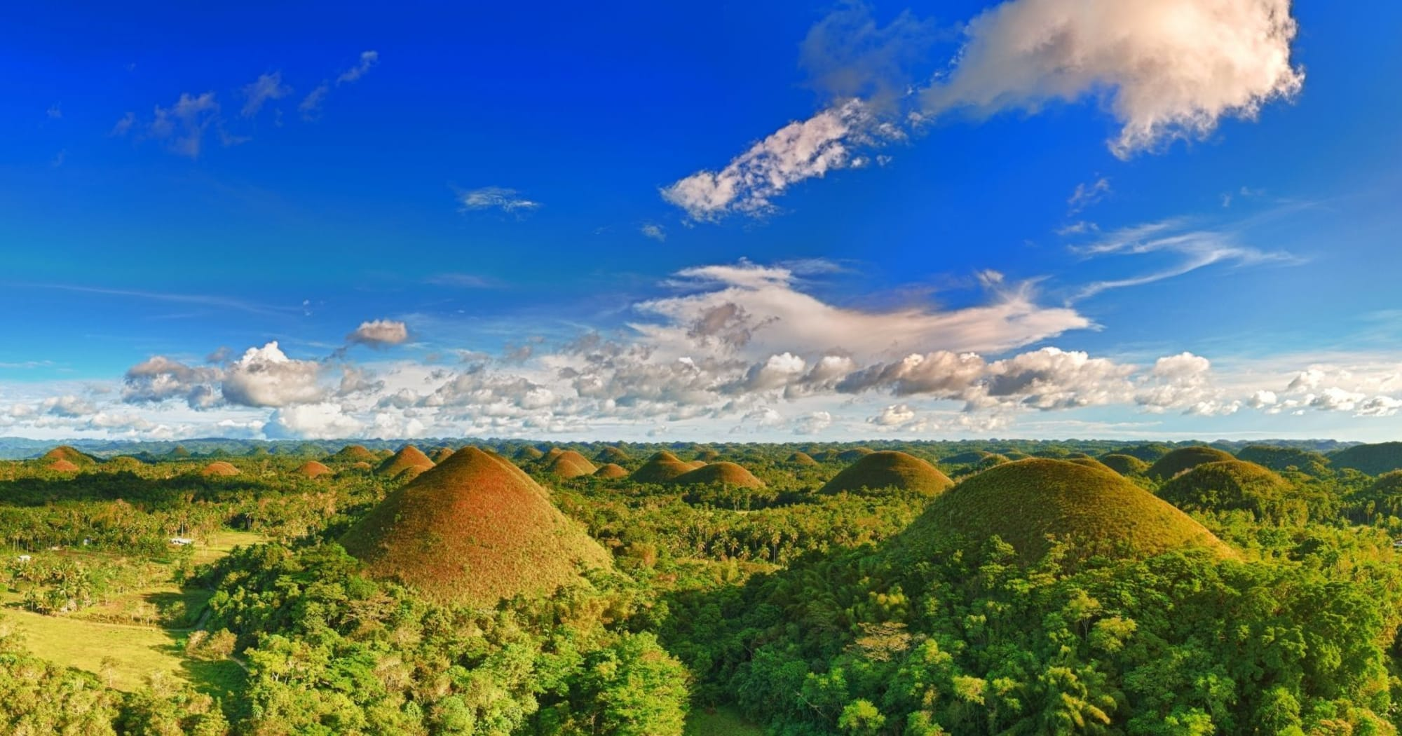 Bubble-to-bubble travel arrangement with other countries can help boost PH economy, say Bohol's Governor