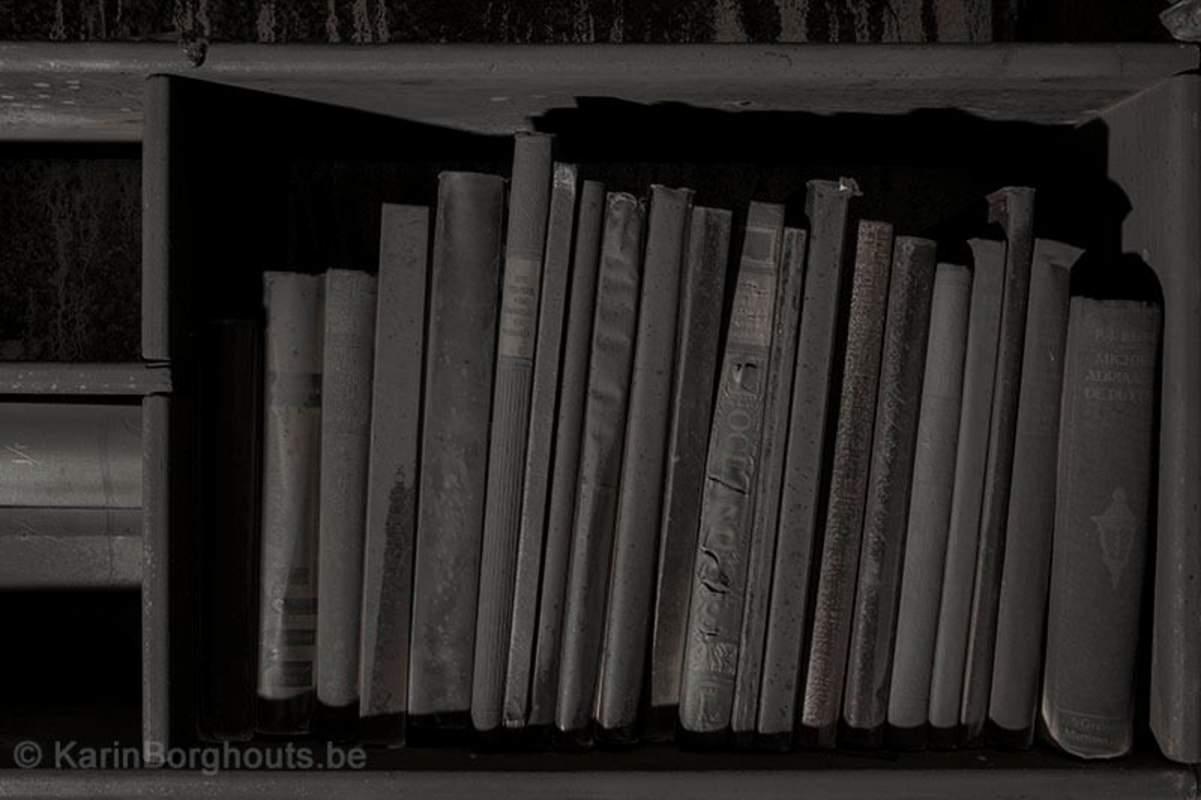 Boeken Karin Borghouts
