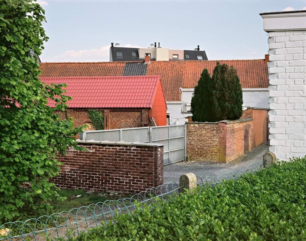 Rooilijn17 K Borghouts