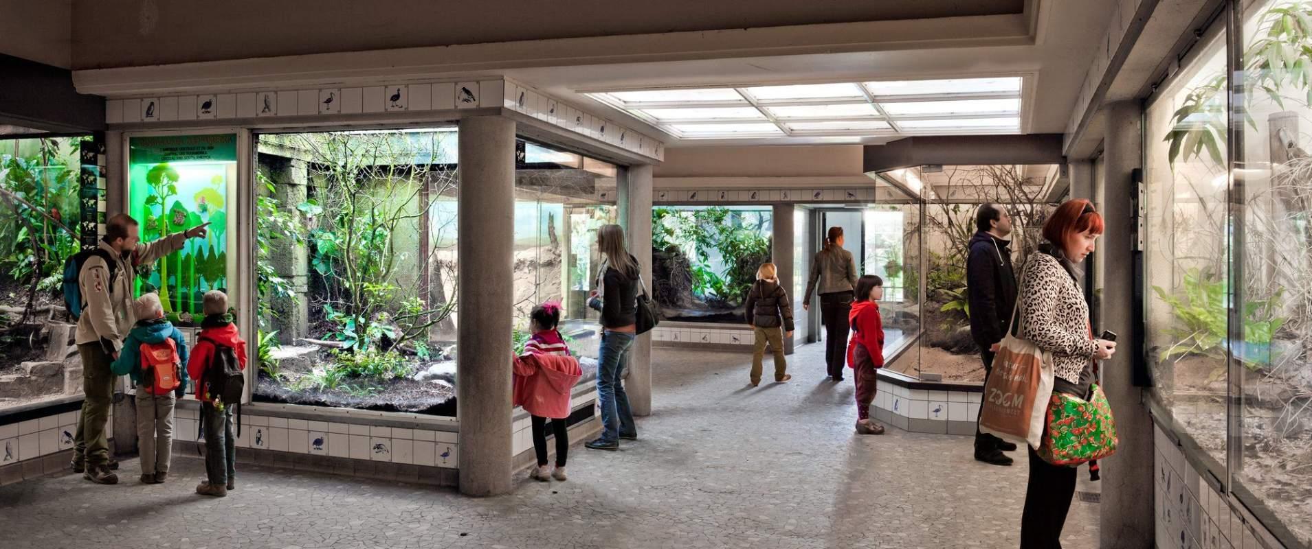Zoo K Borghouts