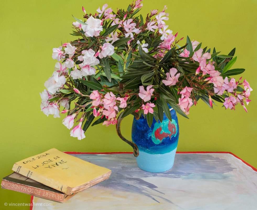 Vincentwashere Oleanders Books