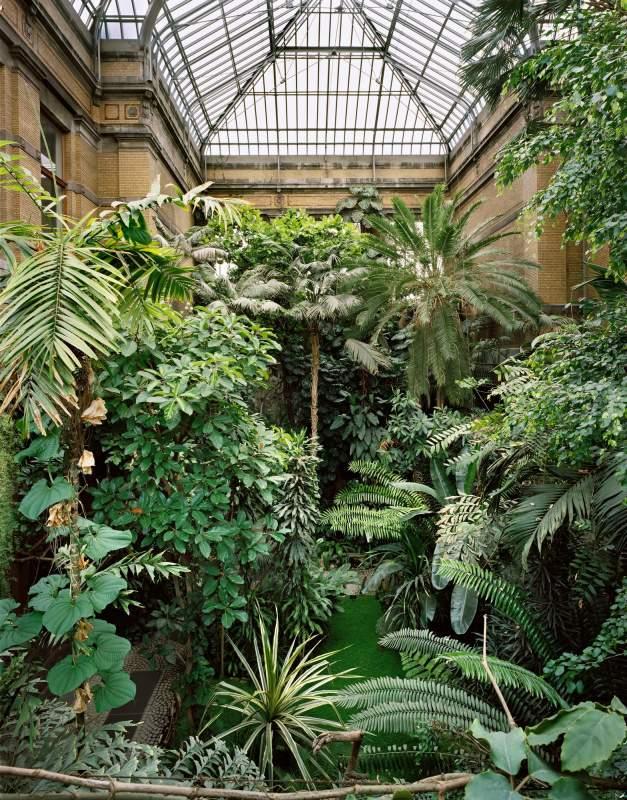 Plantentuin Karin Borghouts 20150430115933