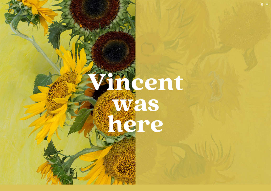 Vincentwashere 1