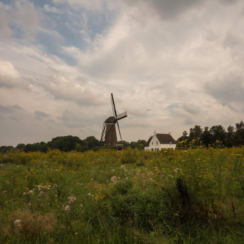 Vincentwashere Nuenen Roosmalen Mill 20191224083715