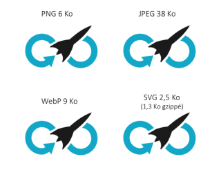 PNG 6Ko; JPEG 38Ko; WebP 9Ko; SVG 2,5 Ko (1,3 gzippé)