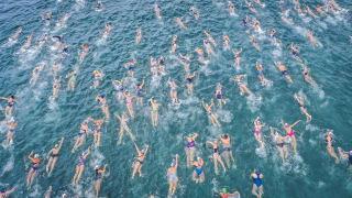 Une course de natation en eau vive. Pas de couloirs, tous les participants se ruent en même temps vers l'arrivée, quitte à entrer en collision.