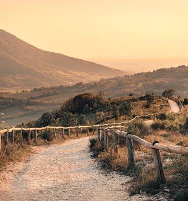 Sentiero nei Colli Euganei