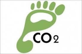 Neked mennyi a karbonlábnyomod? - Botanooigazság
