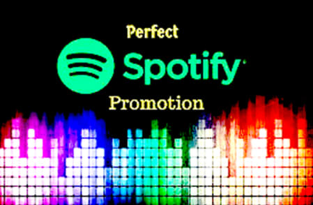 Buy Cheap Spotify Followers