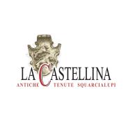 Tenute Squarcialupi La Castellina