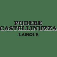 Podere Castellinuzza