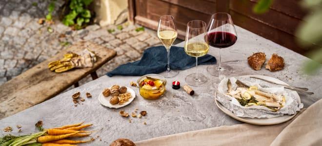 Austrian Wine – Grüner Veltliner along the Danube